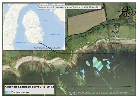 Seagrass Map At Kildonan Survey