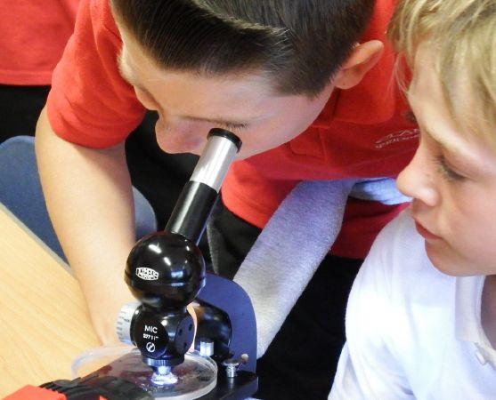 kidsandmicroscop