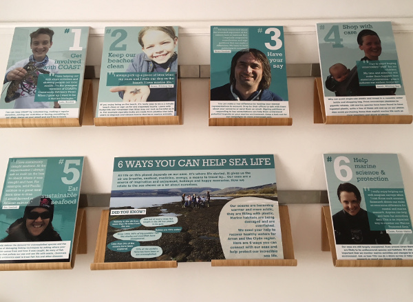 6 ways you can help