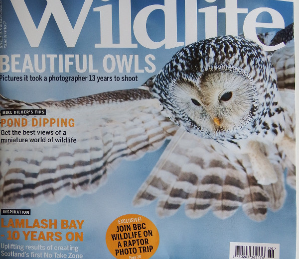 Wildlife magazine