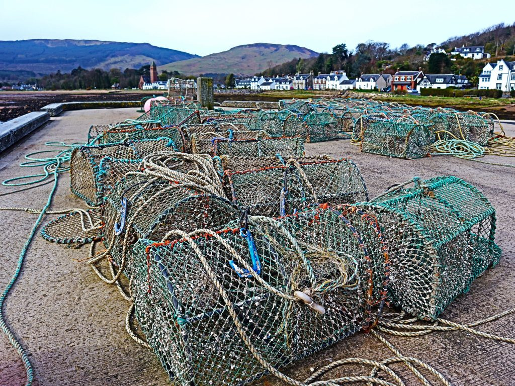 creels in lamlash